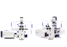 Laser Scanning Microscopes